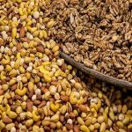Iran's dried nuts exports hit 36% growth in current year
