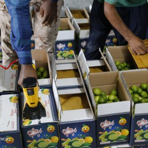Iran exports over 221k tons of agri. products to Iraq in Q1